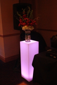 Perfect Day Wedding Planners DJ light stand